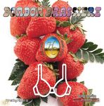Hot Caress Bonbon Brassiere