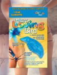 MicroLovingBird